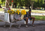 A flower vendor takes a break to surf the internet on his smartphone in Havana, Cuba, Thursday, Dec. 6, 2018. For the first time, Cubans are now able to sign up for 3G internet service for their mobile phones, with packages ranging from 600 megabytes for about $7 to four gigabytes for about $30 month. (AP Photo/Desmond Boylan)