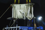 FILE - A beluga whale is lifted from a transport truck after arriving at Mystic Aquarium, May 15, 2021 in Mystic, Conn. The aquarium says that a second of the five beluga whales it imported in May from a marine park in Canada is in failing health. The revelation comes three weeks after a male beluga, who was also part of the group that arrived from Marineland in Niagara Falls, died. (Jason DeCrow/AP Images for Mystic Aquarium, File)