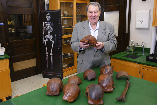 In this 2019 photo provided by the University of Iowa, Professor Russell Ciochon holds a cast of a Homo erectus skull at his lab in Iowa City. In a report released Wednesday, Dec. 18, 2019 by the journal Nature, scientists conclude that remains found in Java, Indonesia are between 108,000 and 117,000 years old. Homo erectus is generally considered an ancestor of our species. (Tim Schoon/University of Iowa via AP)