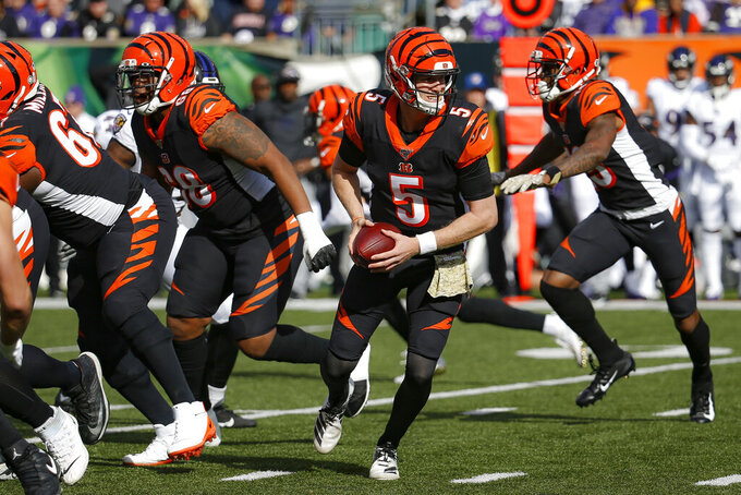 Cincinnati Bengals quarterback Ryan Finley looks to hand off the ball during the first half of NFL football game against the Baltimore Ravens, Sunday, Nov. 10, 2019, in Cincinnati. (AP Photo/Frank Victores)
