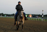 Trainer D. Wayne Lukas rides along the main track while watching thoroughbreds work out at Belmont Park, Friday, June 8, 2018, in Elmont, N.Y. The 150th running of the Belmont Stakes horse race is on Saturday. (AP Photo/Julie Jacobson)