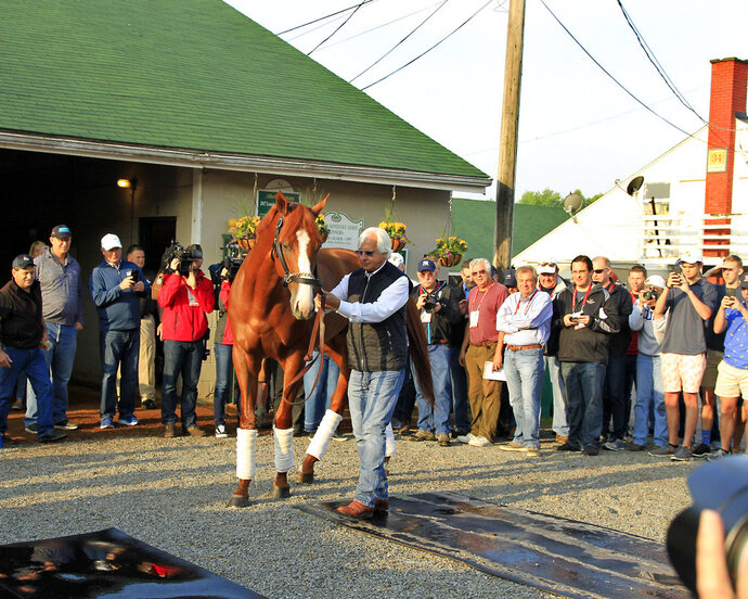 Justify, led by trainer Bob Baffert, poses for photos the morning after winning the 144th Kentucky Derby at Churchill Downs in Louisville, Ky., Sunday, May 6, 2018. (AP Photo/Garry Jones)