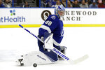 Tampa Bay Lightning goaltender Andrei Vasilevskiy makes a save on a shot by the New York Rangers during the first period of an NHL hockey game Thursday, Nov. 14, 2019, in Tampa, Fla. (AP Photo/Chris O'Meara)