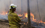 A firefighter keeps an eye on a controlled fire as they work at building a containment line at a wildfire near Bodalla, Australia, Sunday, Jan. 12, 2020. Authorities are using relatively benign conditions forecast in southeast Australia for a week or more to consolidate containment lines around scores of fires that are likely to burn for weeks without heavy rainfall. (AP Photo/Rick Rycroft)