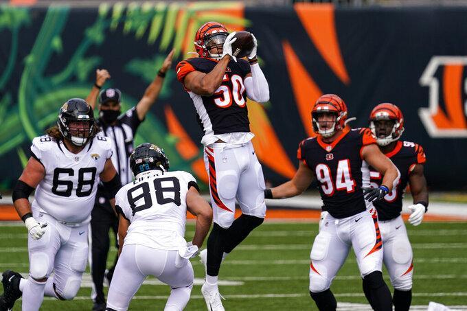 Cincinnati Bengals outside linebacker Jordan Evans (50) intercepts a pass in the first half of an NFL football game against the Jacksonville Jaguars in Cincinnati, Sunday, Oct. 4, 2020. (AP Photo/Bryan Woolston)