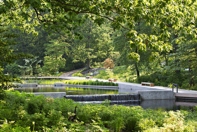 This photo provided by the New York Botanical Garden shows the Native Plant Garden at the NYBG in New York. Sustainability and resilience were important considerations for landscape architect Sheila Brady's design of the garden. Storm water captured on site feeds the central water feature. Black locust, considered invasive in parts of the US, was used to construct the wooden promenade. The regionally native plants provide invaluable food and shelter for native birds and butterflies at risk from climate change and other anthropogenic stresses. (Robert Benson/NYBG via AP)