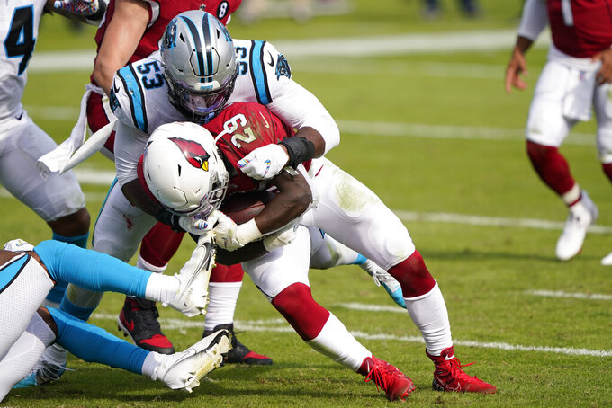 Arizona Cardinals running back Chase Edmonds is tackled by Carolina Panthers defensive end Brian Burns during the second half of an NFL football game Sunday, Oct. 4, 2020, in Charlotte, N.C. (AP Photo/Brian Blanco)