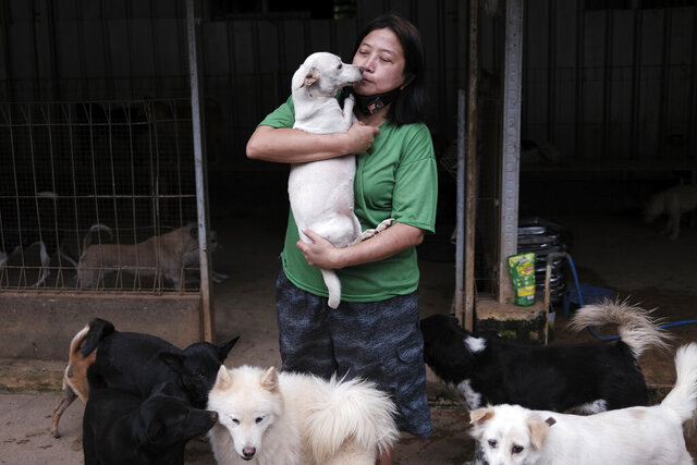 Susana Somali, center, carries a dog called 'White' at Pejaten Shelter, a home to more than 1,400 dogs which she runs, in Jakarta, Indonesia, Thursday, July 2, 2020. The number of dogs at the shelter has been increasing since the COVID-19 outbreak started in Indonesia as many canine owners gave up their pets due to economic difficulties they face due to the pandemic.(AP Photo/Dita Alangkara)