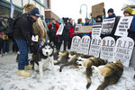 FILE - In this March 3, 2018, file photo, Anchorage resident Terry Fischer, with his Alaskan Husky Litho, happens into the People For the Ethical Treatment of Animals , PETA protest prior to the ceremonial start of the Iditarod Trail Sled Dog Race in Anchorage, Alaska. PETA is the biggest critic of the world's most famous sled dog race, but new Iditarod CEO Rob Urbach has started discussions with the animal rights group and plans a sit-down meeting with PETA Thursday, Oct. 17, 2019, in Los Angeles. (AP Photo/Michael Dinneen, File)