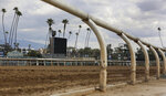 FILE - In this March 7, 2019, file photo, The home stretch race track is empty at Santa Anita Park in Arcadia, Calif. Santa Anita had its third horse death in nine days when a gelding pulled up during a race and was later euthanized. Twenty-six horses have now died in racing or training at the Southern California track since Dec. 26. (AP Photo/Damian Dovarganes, File)