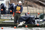 A worker from a natural resource agency uses a net to drive Asian carp to a fish pump which removes them from Kentucky Lake near Golden Pond, Ky., Monday, Feb. 17, 2020. The harvesting method mainly targets bighead and silver carp, two of the four invasive carp species collectively known as Asian carp in the U.S. Both bighead and silver carp devour plankton that form the base of the food chains, grow rapidly and reproduce prolifically, outcompeting many native fish. (AP Photo/Mark Humphrey)