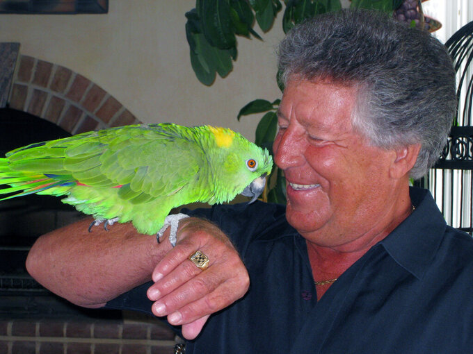 In this July 23, 2008, photo provided by Amy Hollowbush, Mario Andretti is shown with his parrot Gonzo at his home in Nazareth, Pa. The nights are the loneliest for Andretti, who finds himself alone in his sprawling Pennsylvania mansion with no one to talk to but Gonzo, his 34-year-old yellow-naped amazon parrot. One of the greatest racers of all-time is struggling, not unlike so many regular people around the world during this pandemic that has devastated families and claimed more than 3 million lives globally. (Amy Hollowbush via AP)