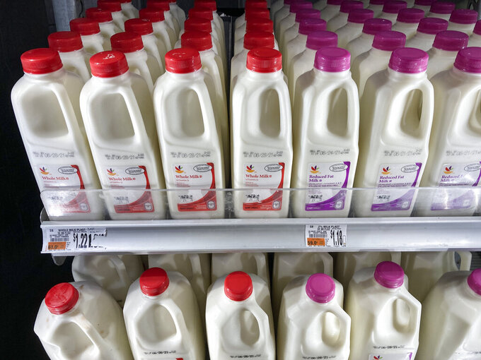 Shown are milk jugs at a grocery store in Roslyn, Pa., Tuesday, June 15, 2021. Wholesale prices, boosted by rising food costs, increased 0.8% in May, and are up by a record amount over the past year, another indication that inflation pressures are rising since the economy has begun to re-open following the pandemic lockdowns. (AP Photo/Matt Rourke)