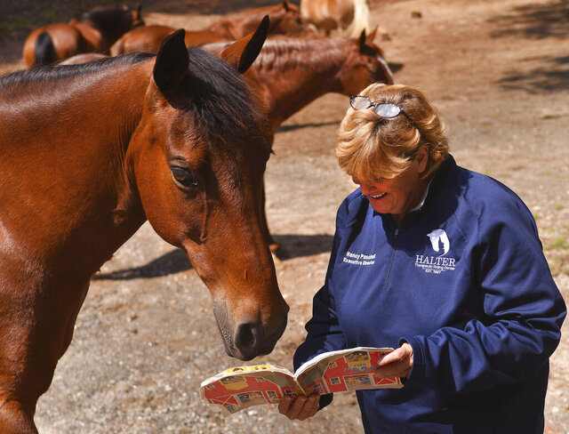 Nancy Paschall, executive director of HALTER, reads a story to horses, including