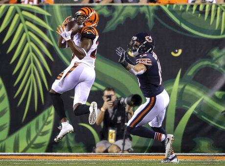 Bears Bengals Football