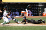 San Francisco Giants' Kevin Pillar, right, slides into home to score a run next to Oakland Athletics catcher Chris Herrmann during the second inning of a baseball game in Oakland, Calif., Sunday, Aug. 25, 2019. (AP Photo/Jeff Chiu)