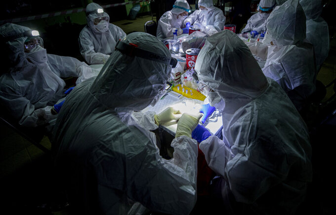 Researchers swap samples from a bat's mouth inside Sai Yok National Park in Kanchanaburi province, west of Bangkok, Thailand, Friday, July 31, 2020. Researchers in Thailand have been trekking though the countryside to catch bats in their caves in an effort to trace the murky origins of the coronavirus. (AP Photo/Sakchai Lalit)
