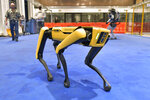 Marc Raibert, left rear, founder and chair of Boston Dynamics watches one of the company's Spot robots during a demonstration, Wednesday, Jan. 13, 2021, at their facilities in Waltham, Mass.(AP Photo/Josh Reynolds)