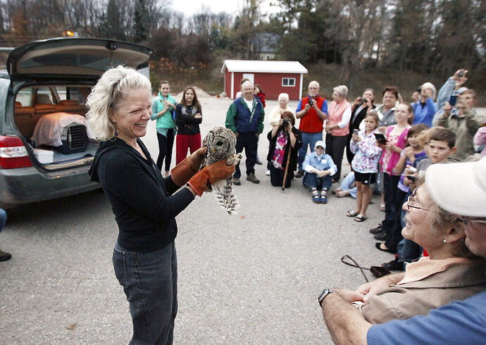 Rebecca Lessard, executive director of Wings of Wonder, shows a male barred owl to spectators prior to releasing him into the wild on Thursday, October 25, 2012 behind the Leelanau Montessori Public School Academy in Suttons Bay, Mich. (Keith King/Traverse City Record-Eagle via AP)