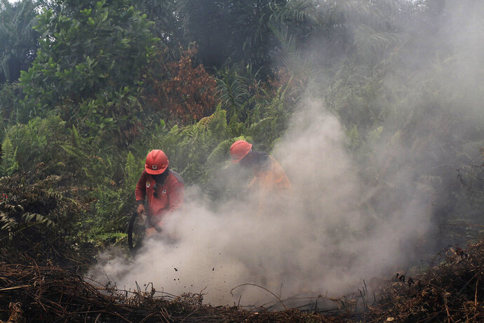 Firefighters try to extinguish brush fires in Pekanbaru, Riau province, Indonesia, Saturday, Sept. 14, 2019. Nearly every year, Indonesian forest fires spread health-damaging haze across the country and into neighboring Malaysia and Singapore. The fires are often started by smallholders and plantation owners to clear land for planting.(AP Photo)