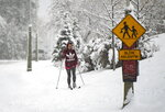 A cross-country skier makes their way beside Queen Elizabeth Drive during a major snowstorm in Ottawa on Saturday, Jan. 16, 2021.    (Justin Tang/The Canadian Press via AP)