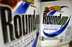 FILE - In this June 28, 2011, file photo, bottles of Roundup herbicide, a product of Monsanto, are displayed on a store shelf in St. Louis. A San Francisco jury on Friday, Aug. 10, 2018, ordered agribusiness giant Monsanto to pay $289 million to a former school groundskeeper dying of cancer, saying the company's popular Roundup weed killer contributed to his disease. (AP Photo/Jeff Roberson, File)
