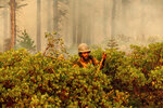 Firefighter Cody Carter battles the North Complex Fire in Plumas National Forest, Calif., on Monday, Sept. 14, 2020.   Firefighters trying to contain the massive wildfires in Oregon, California and Washington state are constantly on the verge of exhaustion as they try to save suburban houses, including some in their own neighborhoods. (AP Photo/Noah Berger)