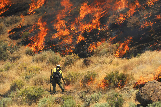 FILE — In this July 5, 2017 file photo a firebreak is created as crews work to protect a home site from a wildfire along Pyramid Highway, near Reno, Nev. The Center for Biological Diversity filed a lawsuit, under the Freedom of Information Act in Reno this week, Friday, Aug. 13, 2021,  against the U.S Bureau of Land Management accusing federal land managers of illegally withholding information about environmental assessments used to justify plans to create fuel breaks to slow wildfires by clearing forests and shrubs across rangeland six western states. (Jason Bean/The Reno Gazette-Journal via AP)