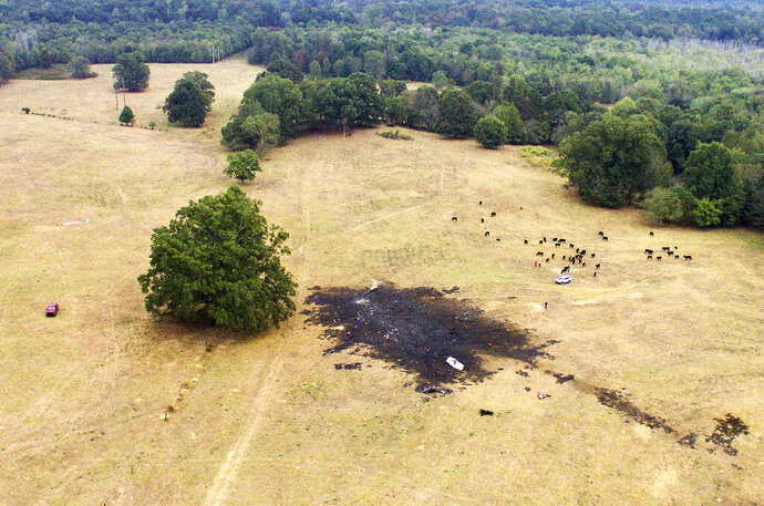 This aerial photo provided by Michael A. Clifton shows the scene after one of the Royal Canadian Air Force's jets crashed in an area near Hampton, Ga., before their scheduled performance at an air show Sunday, Oct. 13, 2019. The Royal Canadian Air Force says one of its pilots is safe after he had to eject from his plane just before an aerobatics show in the United States. (Michael A. Clifton via AP)