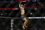Dominick Reyes celebrates his victory over Chris Weldman in a light heavyweight mixed martial arts bout, Friday, Oct. 18, 2019, at UFC Fight Night in Boston. (AP Photo/Elise Amendola)