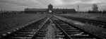 The railway tracks from where hundreds of thousands of people were directed to the gas chambers to be murdered, inside the former Nazi death camp of Auschwitz Birkenau or Auschwitz II, in Oswiecim, Poland, Saturday, Dec. 7, 2019. On January 27, 2020 _ 75 years after its liberation _ hundreds of survivors from across the world will come back to visit Auschwitz for the official anniversary commemorations. In advance of that, Associated Press photographer Markus Schreiber visited the site. Using a panoramic camera with analog film, he documented the remains of the camp in a series of haunting black and white photos. (AP Photo/Markus Schreiber)