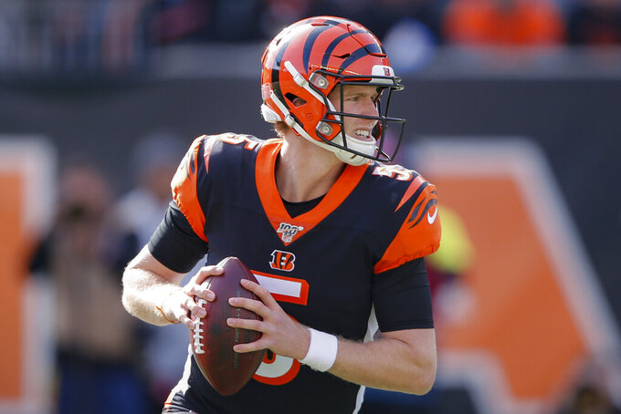 Cincinnati Bengals quarterback Ryan Finley looks to pass during the first half of NFL football game against the Baltimore Ravens, Sunday, Nov. 10, 2019, in Cincinnati. (AP Photo/Gary Landers)