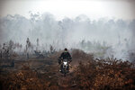 A fire fighter rides his motorcycle as smoke billows from burnt trees at Sebangau National Park, Central Kalimantan, Indonesia, Thursday, Sept. 19, 2019. Indonesia's forest fires are an annual problem that strains relations with neighboring countries. The smoke from the fires has blanketed parts of Indonesia, Singapore, Malaysia and southern Thailand in a noxious haze. (AP Photo/Fauzy Chaniago)