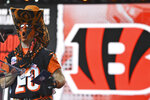 Cincinnati Bengals' 2020 Fan of the Year Shawn Moore announces that the Bengals pick Tyler Shelvin, defensive tackle for LSU, in the fourth round of the NFL football draft, Saturday, May 1, 2021, in Cleveland. (AP Photo/David Dermer)