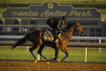 McKinzie, entered in the the Classic horse race, works out on the track at Santa Anita for the Breeders' Cup, Thursday, Oct. 31, 2019, in Arcadia, Calif. (AP Photo/Mark J. Terrill)