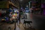 An alone street vender cooks a meal for a customer at Khao San road, a popular hangout with bars and entertainment for Thais and tourists in Bangkok, Thailand, Monday, Jan. 4, 2021. For much of 2020, Thailand had the coronavirus under control. After a strict nationwide lockdown in April and May, the number of new local infections dropped to zero, where they remained for the next six months. However, a new outbreak discovered in mid-December threatens to put Thailand back where it was in the toughest days of early 2020. (AP Photo/Gemunu Amarasinghe)