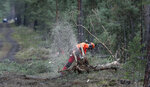 In this Wednesday, Jan. 8, 2020 photo a man works with a chainsaw on a three at the site of the planned new Tesla Gigafactory in Gruenheide near Berlin, Germany. Tesla CEO Elon Musk said during an awards ceremony in Berlin in November 2019 that 'we have decided to put the Tesla Gigafactory Europe in the Berlin area.' The company will also set up an engineering and design center in Berlin, Musk said. He wrote on Twitter that the new plant 'will build batteries, powertrains & vehicles, starting with Model Y.' (AP Photo/Michael Sohn)