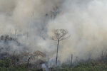 Fire consumes an area near Porto Velho, Brazil, Friday, Aug. 23, 2019. Brazilian state experts have reported a record of nearly 77,000 wildfires across the country so far this year, up 85% over the same period in 2018. Brazil contains about 60% of the Amazon rainforest, whose degradation could have severe consequences for global climate and rainfall. (AP Photo/Victor R. Caivano)