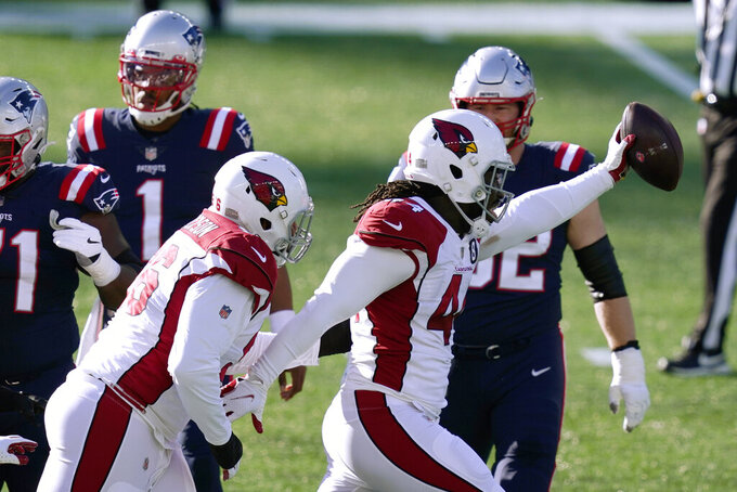 Arizona Cardinals linebacker Markus Golden, right, celebrates his interception of a pass by New England Patriots quarterback Cam Newton, left, in the first half of an NFL football game, Sunday, Nov. 29, 2020, in Foxborough, Mass. (AP Photo/Elise Amendola)