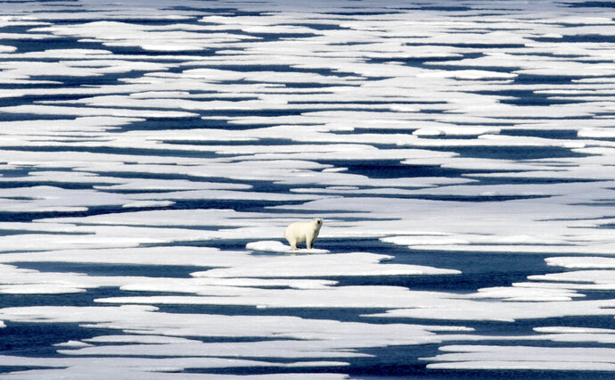 FILE - In this Saturday, July 22, 2017, file photo, a polar bear stands on the ice in the Franklin Strait in the Canadian Arctic Archipelago. In a year of cataclysm, some world leaders at September 2020's annual United Nations meeting are taking the long view, warning: If COVID-19 doesn't kill us, climate change will. With Siberia seeing its warmest temperature on record this year and enormous chunks of ice caps in Greenland and Canada sliding into the sea, countries are acutely aware there's no vaccine for global warming. (AP Photo/David Goldman, File)
