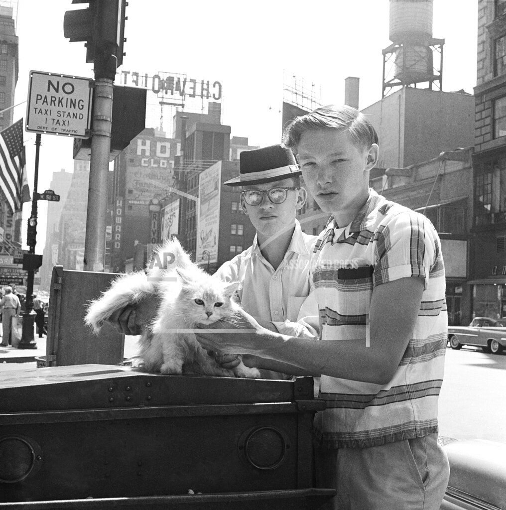 Watchf AP A  NY USA APHS334475 Winged Cat 1959