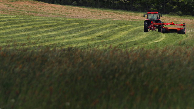 A field of hay is cut during a harvest in Durham, N.H., Thursday, May 28, 2020. (AP Photo/Charles Krupa)
