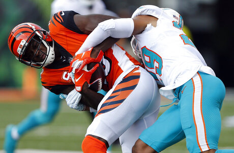 Dolphins Bengals Football