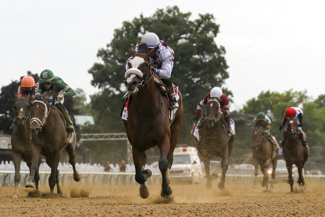 FILE - In this June 20, 2020, file photo, Tiz the Law, center, with jockey Manny Franco up, crosses the finish line to win the 152nd running of the Belmont Stakes horse race at Belmont Park in Elmont, N.Y. After an out-of-order Triple Crown with a different horse winning the Belmont, Kentucky Derby and Preakness, it might be a long time until Tiz the Law, Authentic and Swiss Skydiver all race against one another. That is, unless Swiss Skydiver challenges them and older males in the Breeders' Cup Classic on Nov. 7, which is expected to be a Tiz the Law/Authentic rematch.(AP Photo/Seth Wenig, File)