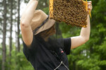 In this June 12, 2019 photo, Leigh-Kathryn Bonner, founder and CEO of Bee Downtown, searches for the queen bee during a hive check at Panther Creek Farm in Durham, N.C. (Casey Toth/The News & Observer via AP)