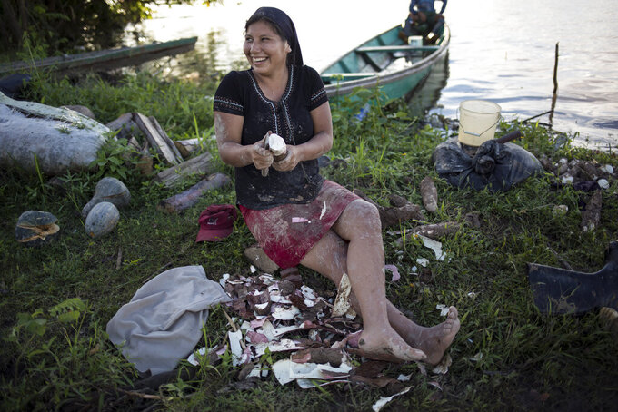 Andrea Rodrigo, a member of the Israelites of the New Universal Pact religious group, removes the husk from a yucca or cassava root, on the banks of the Amazon River in Jose Carlos Mariategui, Peru, Wednesday, March 31, 2021. The 21-year-old Peruvian woman makes yucca flour that her family sells in markets along Peru's remote borders with Brazil and Colombia. (AP Photo/Rodrigo Abd)
