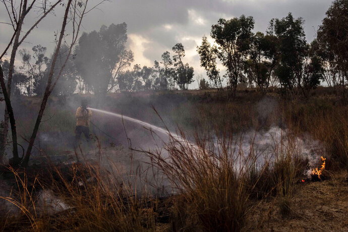 An Israeli firefighter attempts to extinguish a fire caused by an incendiary balloon on the Israeli side of the border between Israel and Gaza Strip, Sunday, Aug. 30, 2020. (AP Photo/Tsafrir Abayov)