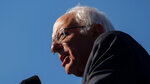 Democratic presidential candidate Sen. Bernie Sanders, I-Vt., speaks to supporters during a rally on Saturday, Oct. 19, 2019 in New York. (AP Photo/Eduardo Munoz Alvarez)