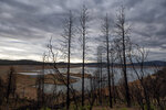 Trees scorched in the 2020 North Complex Fire stand above Lake Oroville on Saturday, May 22, 2021, in Oroville, Calif. At the time of this photo, the reservoir was at 39 percent of capacity and 46 percent of its historical average. California officials say the drought gripping the U.S. West is so severe it could cause one of the state's most important reservoirs to reach historic lows by late August, closing most boat ramps and shutting down a hydroelectric power plant during the peak demand of the hottest part of the summer. (AP Photo/Noah Berger)