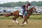 Known Agenda works out ahead of the 153rd running of the Belmont Stakes horse race in Elmont, N.Y., Thursday, June 3, 2021. (AP Photo/Seth Wenig)